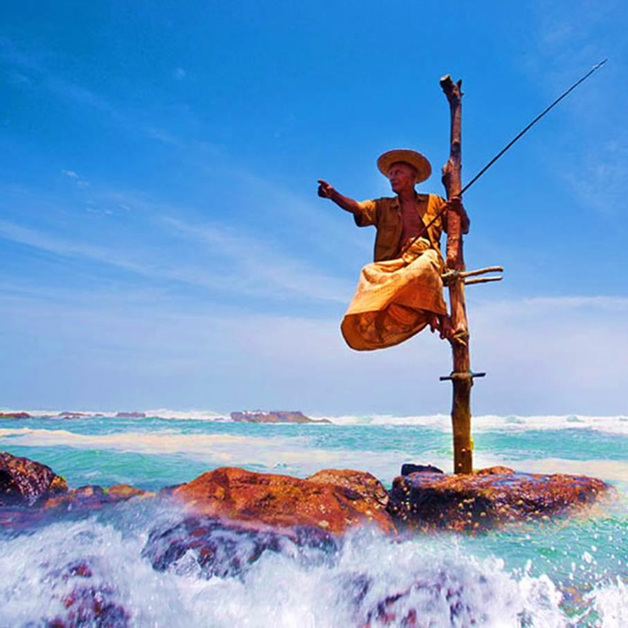 【暑假】印度洋上的一滴眼泪——《斯里兰卡》深度8日之旅