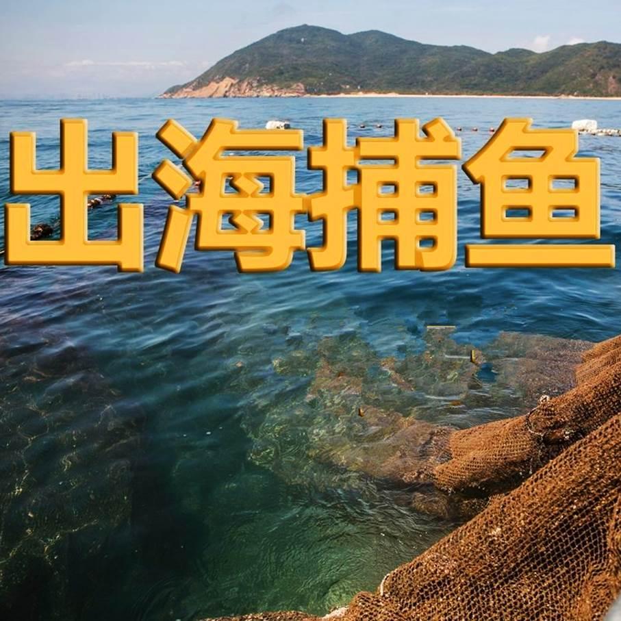 【五一&端午】(0501团成行)看史前遗址、徒步古道,采摘樱桃;乘渔船出海捕鱼、品尝美味海鲜—趣宁波