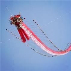 【周末营】放龙头风筝,DIY一个传承400年的非遗软翅风筝、赶鸭子、赛龙舟、田野采摘——趣趣带你拉风带你飞!
