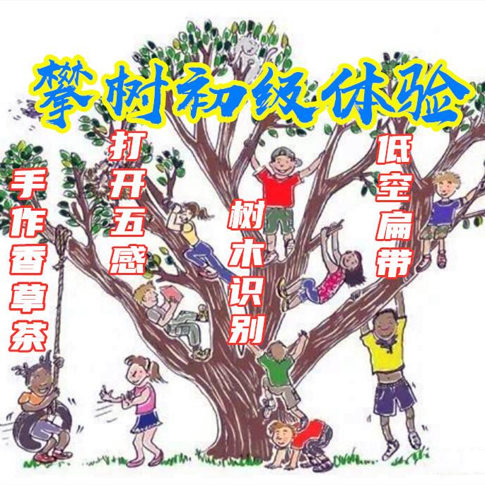 【六一】攀树初级课程、认树木认知、空中瑜伽走扁带、打开五感丛林大冒险、食育课程夏日香草茶—趣。单飞(自驾)