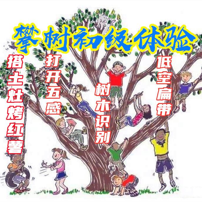 【一日独立营】攀树初级课程、认树木认知、空中瑜伽走扁带、打开五感丛林大冒险、搭土灶烤红薯—户外课程(一)